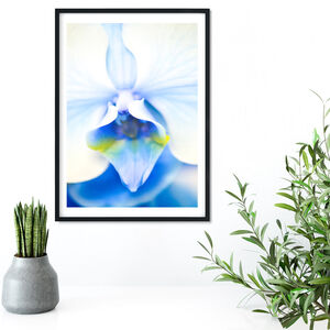 Framed Blue Orchid Macro Photography Print