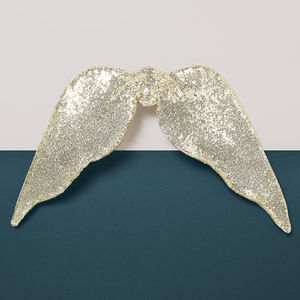 Fallen Angel Wings - gifts for children