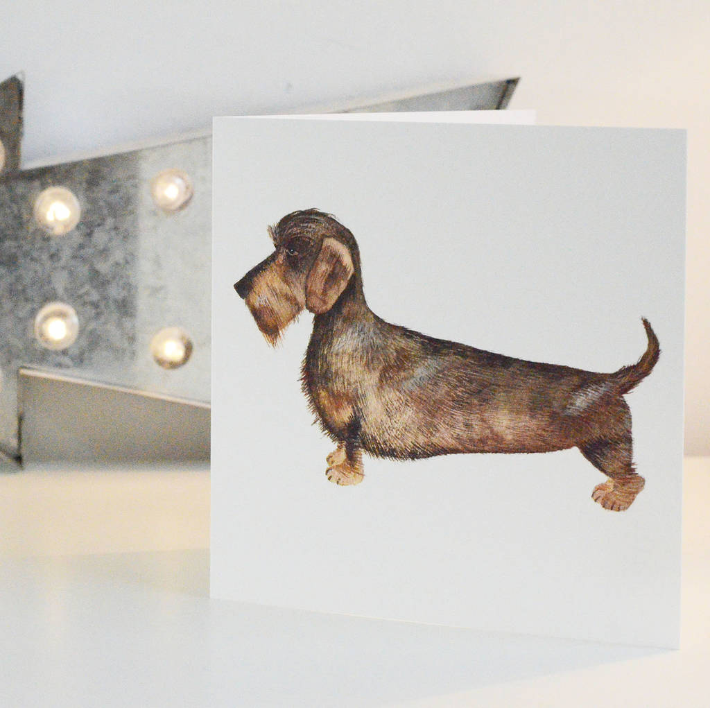 wire haired dachshund greetings card by dimbleby ceramics ...