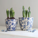 Blue Botanical Plant Pot
