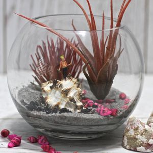Underwater Punk Terrarium Kit