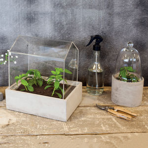 Mini Greenhouse - new in garden