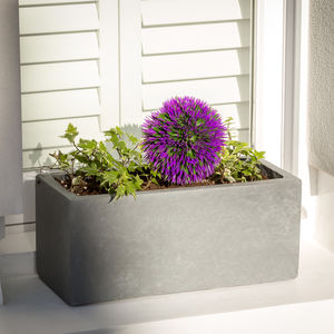 Small Window Box Planter In Parisian Grey - pots & planters