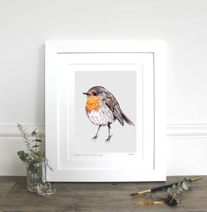 Robin Fine Art Print - animals & wildlife