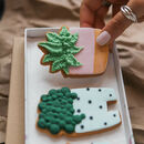 House Plant Biscuit Gift Set