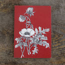 Anemone On Red Greetings Card