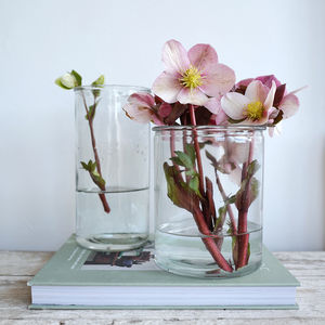 Cylinder Clear Glass Vase