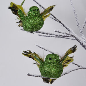 Set Of Two Emerald Green Clip On Birds