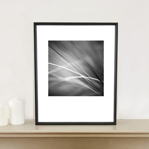 Grass, Art Print - nature & landscape