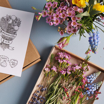 'The Botanical' Mini Posy Fresh Flower Subscription