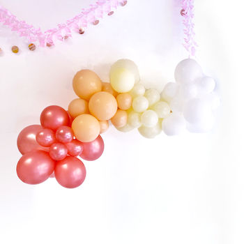 Blush Balloon Garland Party Decoration Kit