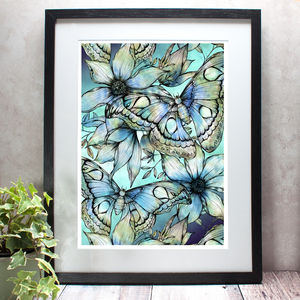 Atlas Moth Limited Edition Fine Art Giclée Print - what's new