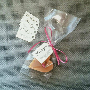 20 Biodegradable Favour Bags, Tags And Ribbon