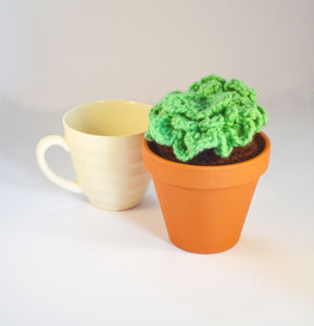 Crocheted Amigurumi Cactus Suculent Large Pot