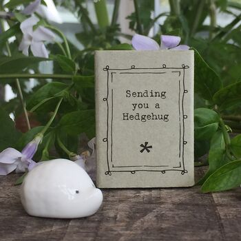 Little Ceramic Hedgehog Sending You A Hedgehug
