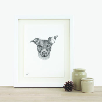 Bespoke Custom Pet Illustration