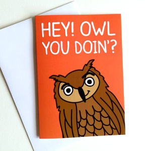 Funny Birthday Or Anniversary Card 'Owl You Doin' - shop by category