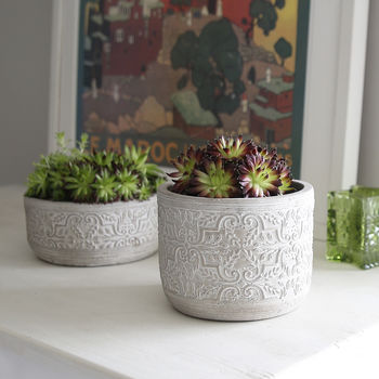 Cement Floral Embossed Pots