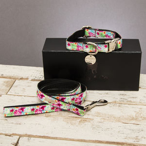The Clifton Floral Dog Collar And Lead Set - dog collars
