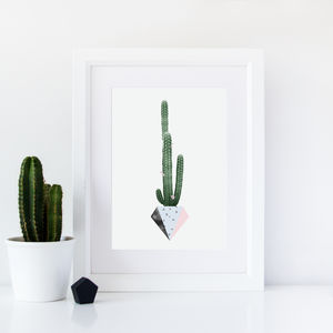 Potted Cactus Art Print
