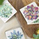 Set Of Four Succulents Resin Coasters