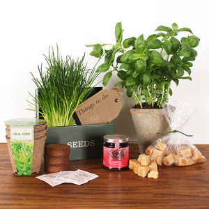 Fathers Day Grow Your Own Herbs Seed Box - seeds & bulbs
