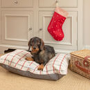Stripe Brushed Cotton Dog Beds