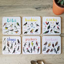 Six Bird Pun Coasters