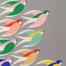 'Birds in flight' close-up