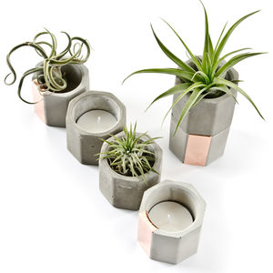 Concrete Copper Hexagon Air Plant Or Candle Holder - pots & planters