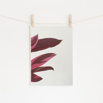 Red Leaves I Photographic Plant Print