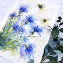 Cornflower And The Bee's Watercolour Print