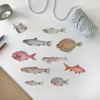 Fish Illustration Stickers