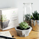 Geometric Concrete Planter Making Kit