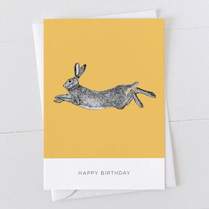 Hare Happy Birthday Card