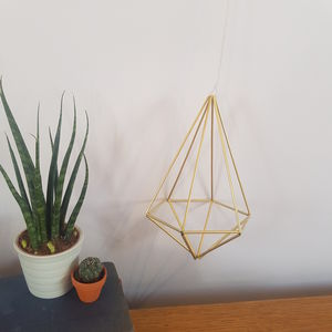 Brass Himmeli 'Hex' Geometric Plant Holder