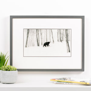 'Bear In Woods' Children's Illustration Print