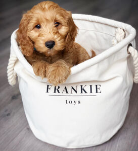 Personalised Pet Storage Canvas Rope Basket