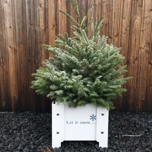 'Let It Snow' Christmas Metal Planter - tree decorations