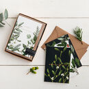 Box Of Eight Botanical Christmas Cards Greenery