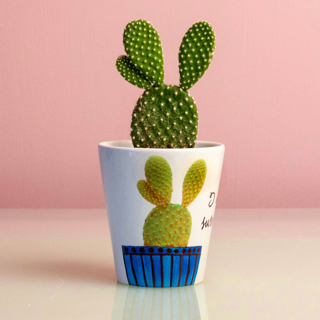personalised cactus plant pot by snapdragon. Black Bedroom Furniture Sets. Home Design Ideas