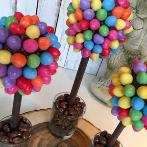 Smartie Eggs ,Chocolate Egg Tree - novelty chocolates
