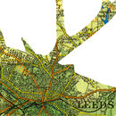 Personalised Stag Map Print