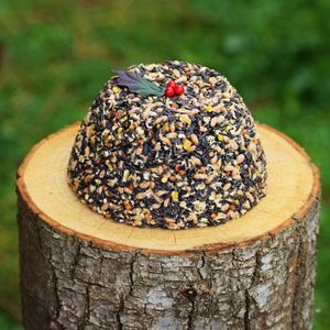 Bird Food Christmas Pudding Bird Lover Gifts - gardener