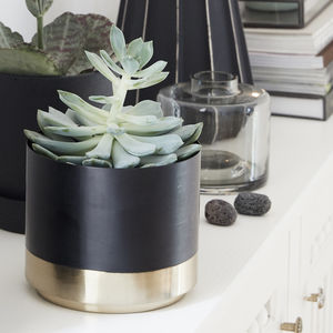 Set Of Two Black And Brass Metal Planter Pots - gardening