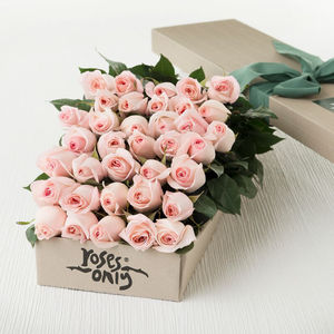 Pastel Pink Rose Gift Bouquet