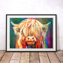 Baby Highland Cow By Sue Gardner Art Print