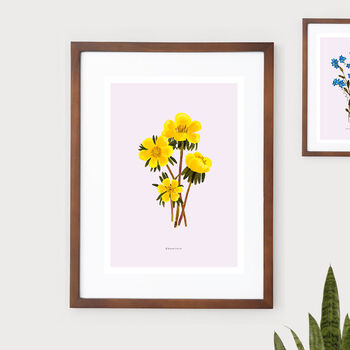 Eranthis Botanical Eco Art Print. One Print = One Tree