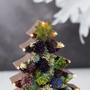 Handmade Succulent Christmas Tree Marquee Light