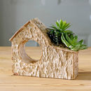 Nordic Birch House With Faux Succulent Plants